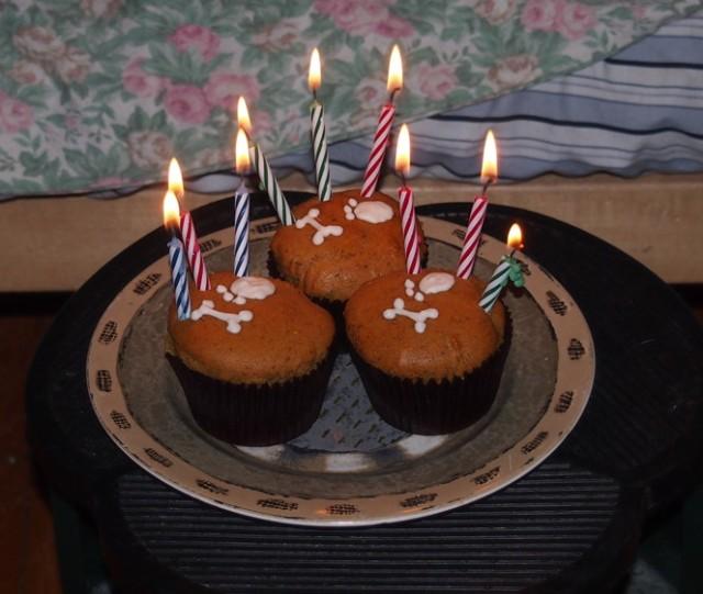 Nine candles. PIP IS NINE.